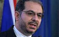 عده ای ناآگاه اقدامات کنسولی از ایرانیان را دفاع از مجرم تلقی می کنند