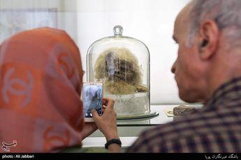موزه ایران باستان در ایام نوروز/ عکس