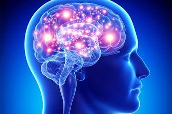 بخشی از مغز که بعد از ۳۶ سالگی رشد می کند!