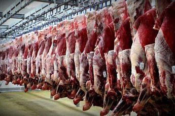 گرانی دوباره گوشت گوسفندی