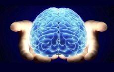سلامت مغزتان را تست کنید