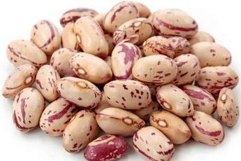 توزیع 270 تن بذر اصلاح شده لوبیا در کشور آغاز شد