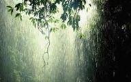 پایتخت اوایل هفته آینده بارانی می شود