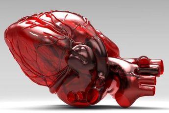 تولید داربست ویژه برای کشت سلولهای قلبی توسط دانشمند ایرانی