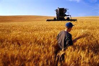 پتانسیل کشاورزی در ایران