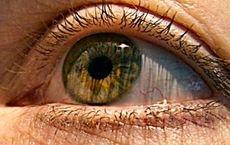 ارتباط قدرت بینایی و زوال ذهنی در افراد مسن