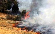 5 هزار متر از اراضی دماوند در آتش سوخت