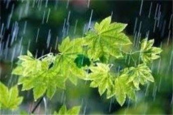 هوای پایتخت بارانی می شود