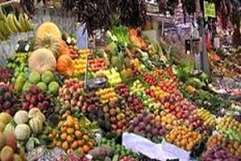 واردات میوه ممنوع شد