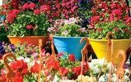 آغاز به کار دوازدهمین نمایشگاه بین المللی گل و گیاه از ۲۹ اردیبهشت