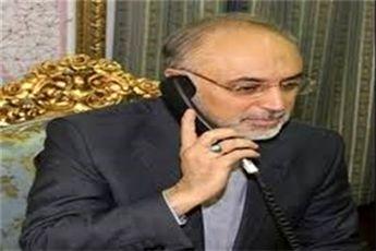 گفتگوی تلفنی صالحی با البرادعی در خصوص تحولات مصر