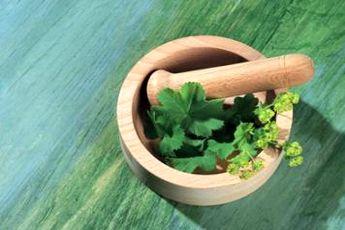 برداشت سالیانه ۱۰ تن گیاهان دارویی در شهرستان ریگان