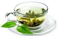 سهم 10 درصدی مازندران از تولید چای خشک در کشور