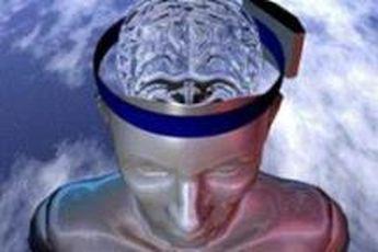 مطالعات نوین مغزی در باب ساختار پیمانه ای ذهن